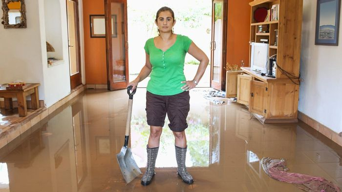What Companies Offer Clean-up Services for Water Damage?