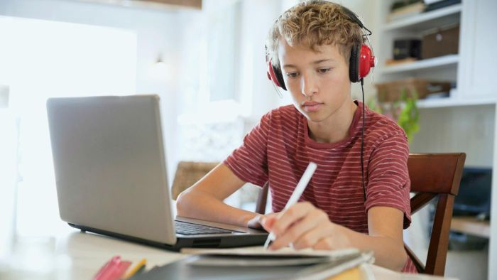 What Grade Levels Can Use IXL Math Games?