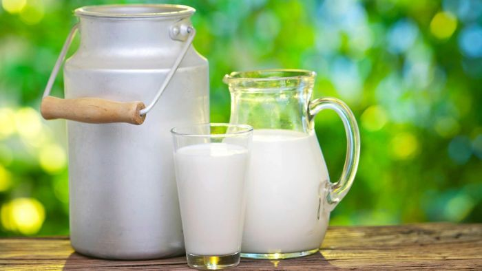How is calcium beneficial to bone growth and health?