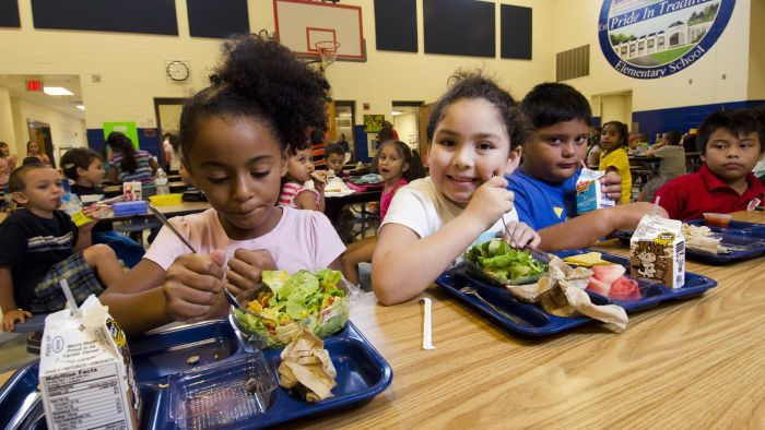 How Do You Find Nutritional Information for School Menus?
