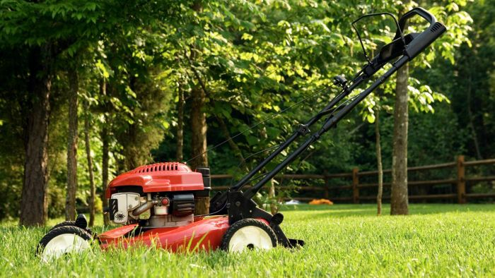 What Are Some of the Best Lawn Mower Brands According to Reviews?