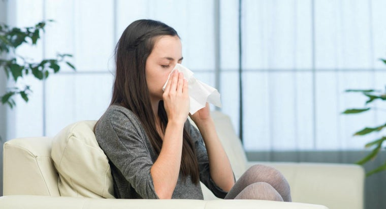 How Do You Treat Allergies Caused by Dust Mites?