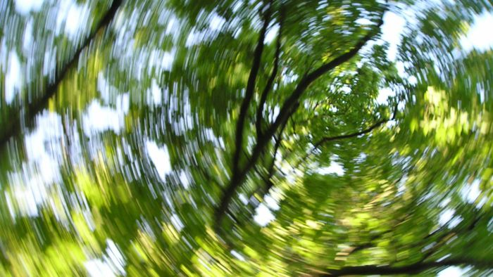 What Are Some Possible Causes for Dizziness?