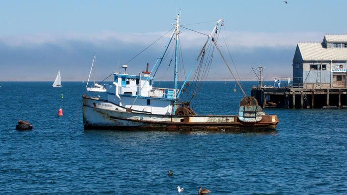 What Are Some Tips for Finding Fishing Boats for Sale?