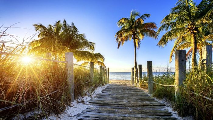 What Are Some Free Things to Do in Florida?