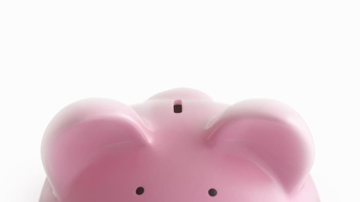 Are There Piggy Banks That Can Hold Giant Coins?