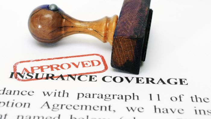What Is Trumbull Insurance?