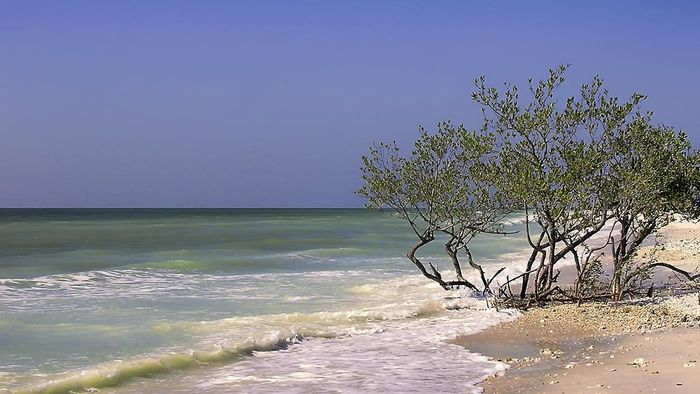 What are the top 10 beaches in Florida?