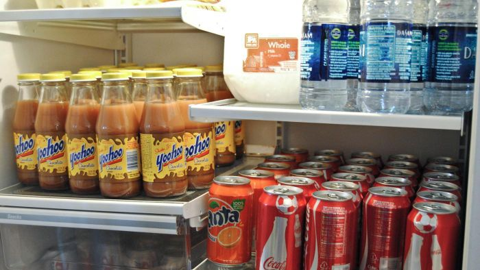 What Should You Do When You See Water Leaking From Your Refrigerator?