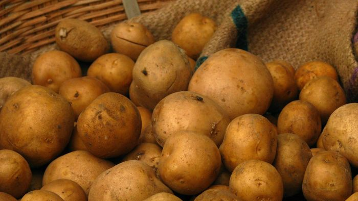 How many calories are in a potato?