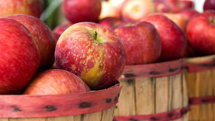 What Is the Story of Johnny Appleseed?