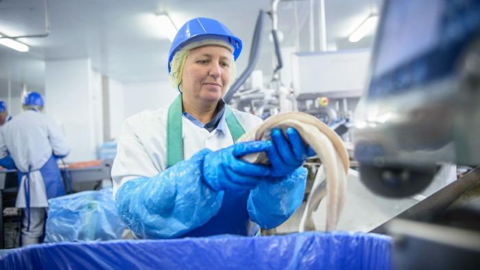 How do you train to become a Food Safety Inspector?