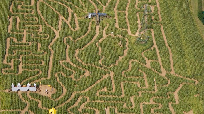 How Do You Find a Local Corn Maze?
