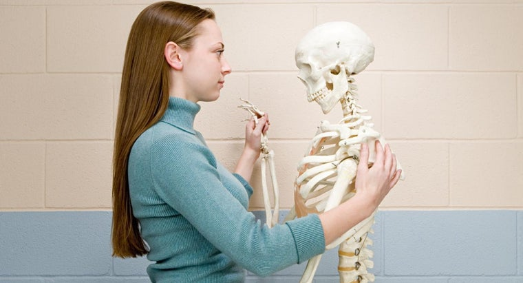 What Is a Normal Bone Density Score for a Woman?