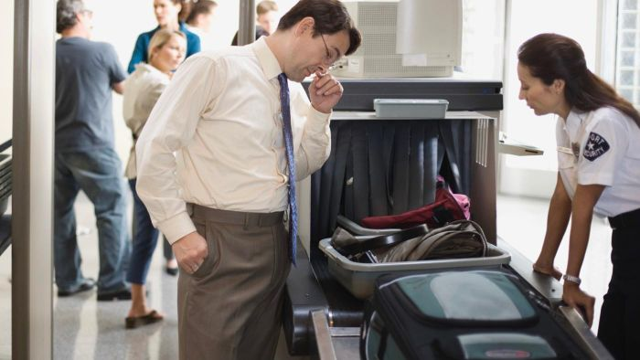 What Are the TSA Rules Regarding Liquids on Airplanes?