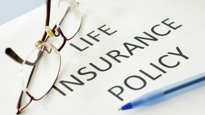 What Are Some Companies That Offer Life Insurance Plans With Endowment Savings?