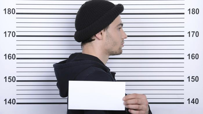 Are Inmate Mugshots Viewable Online?