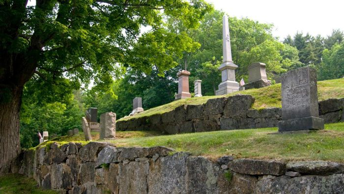 What Is the Average Cost of a Cemetery Plot?