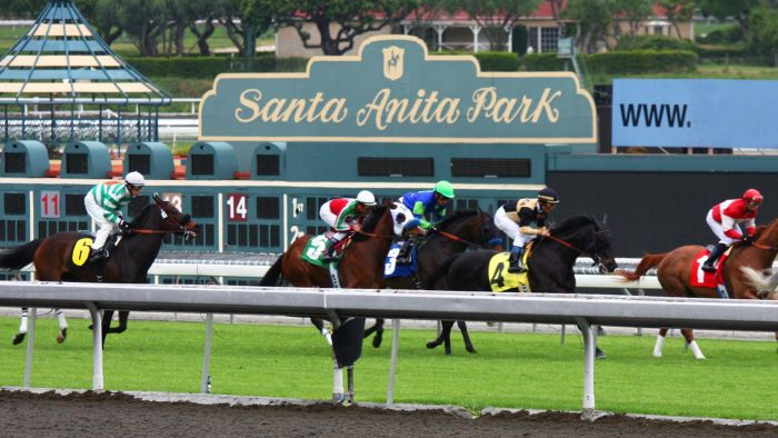 Where Are Horse Racing Entries for Santa Anita Park Listed?