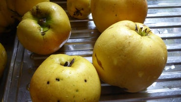 How Do You Eat a Quince Fruit?