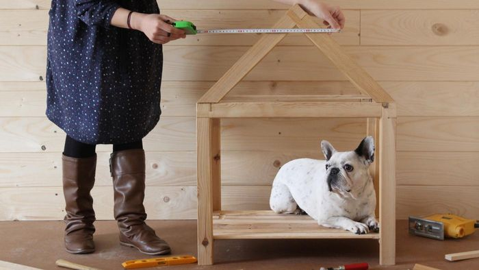 How Do You Find Blueprints for Dog Houses?