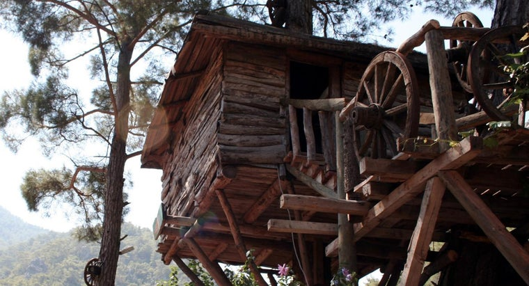 What Are Some Resources for Building a Treehouse?