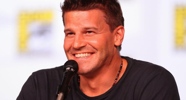 Should You Search for Images of David Boreanaz or Buffy, Angel?