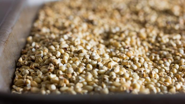 Where Can You Access a List of Gluten-Free Grains?