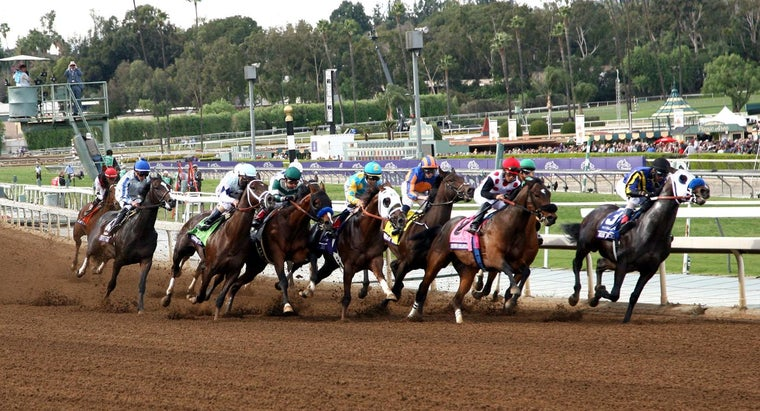 What Were the Pre-Entries for the 2014 Breeders' Cup?