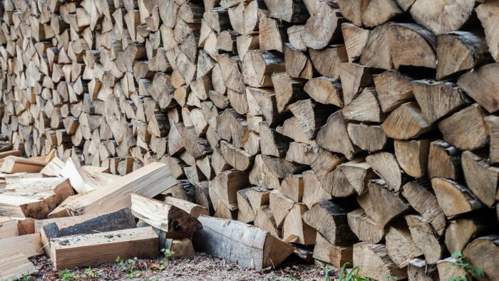 What Is the Best Type of Firewood?