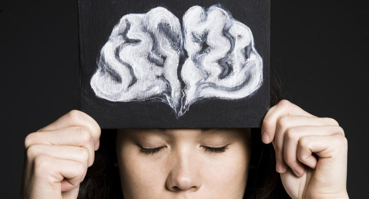 What Is the Function of the Brain's Frontal Lobe?