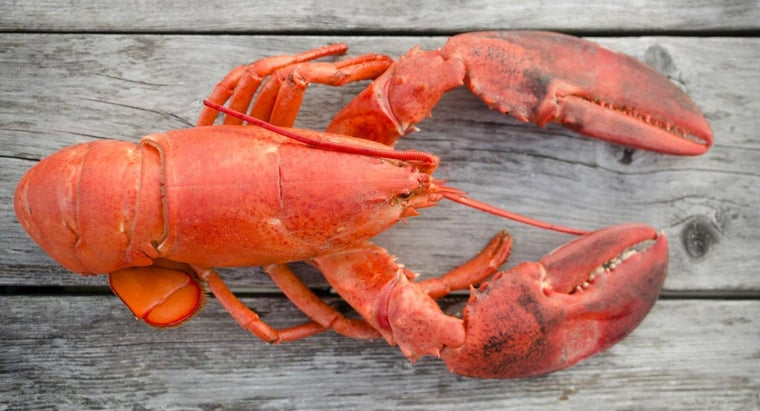 Has Lobster Always Been an Upscale Food?