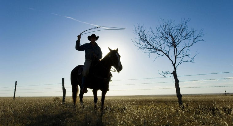 How Do You Find Ranches for Sale in Texas?