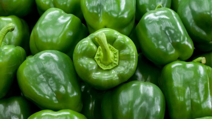 What Are the Nutrition Facts for Green Bell Peppers?
