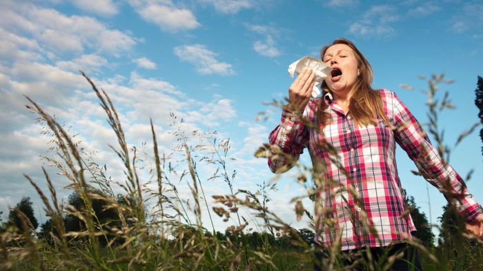 What are the common allergy symptoms in adults?