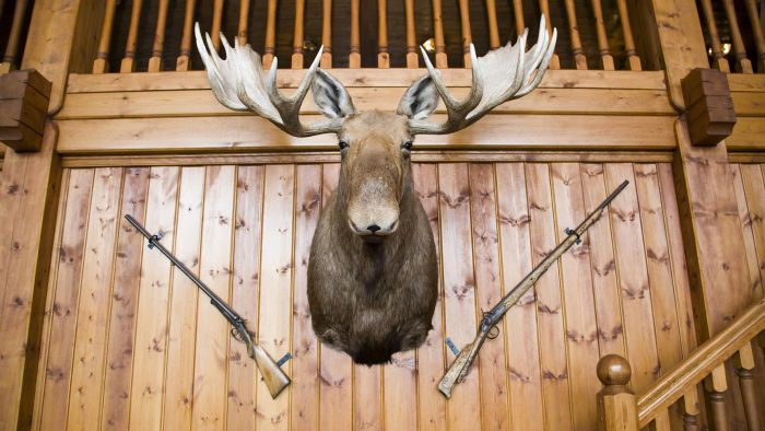 What Is Important to Consider When Looking for Hunting Cabins for Sale in PA?