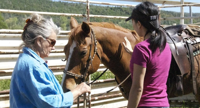 How Do You Find Property to Keep Horses in California?