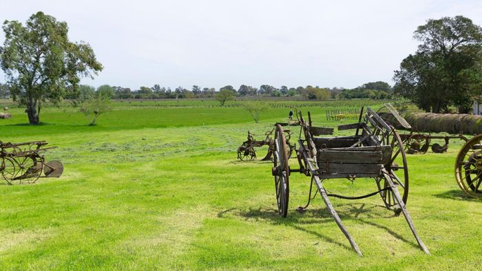 Where Can You Buy Antique Farm Equipment?