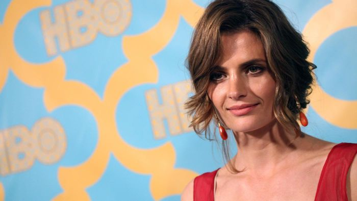 "Did Stana Katic Leave ""Castle"" in 2015?"