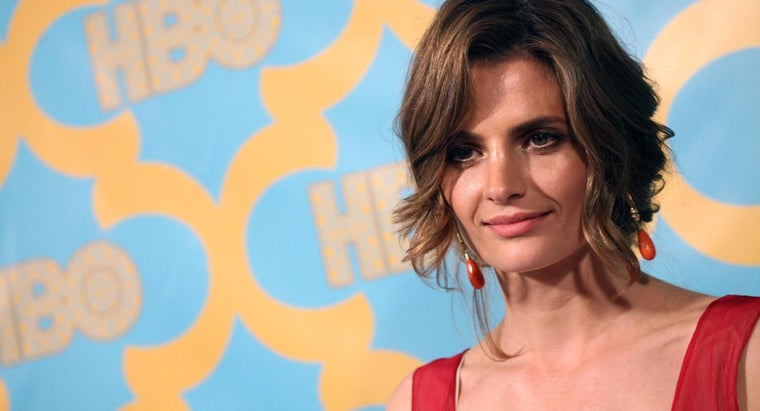 """Did Stana Katic Leave """"Castle"""" in 2015?"""