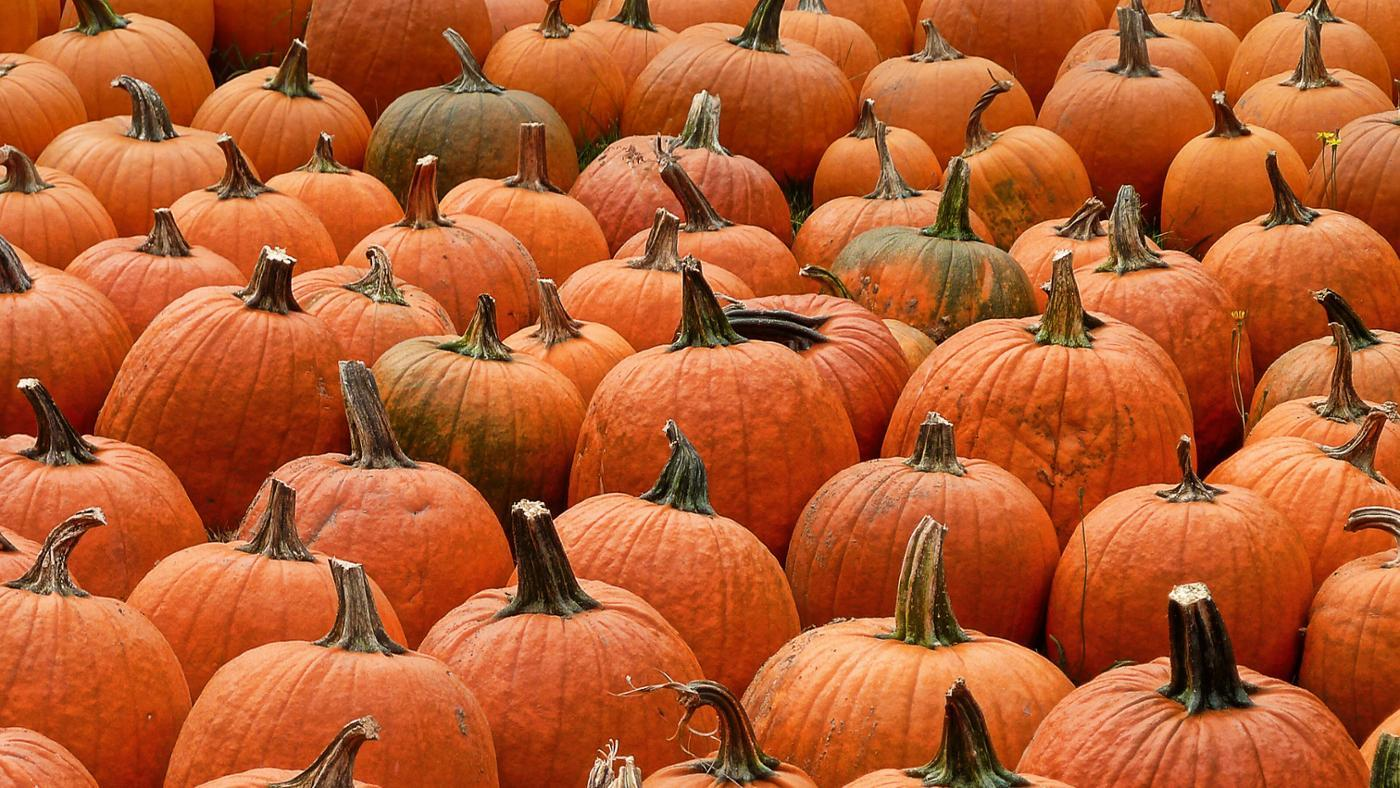 What Are Some Healthy Pumpkin Recipes?