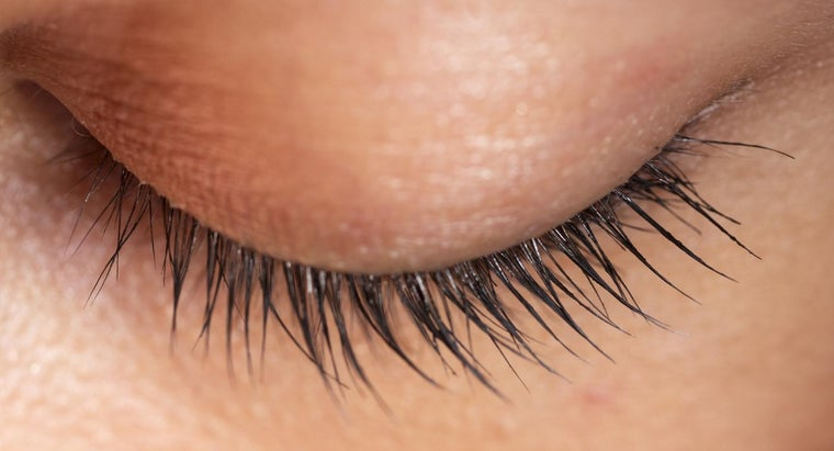 What Can Cause an Eyelid to Twitch?