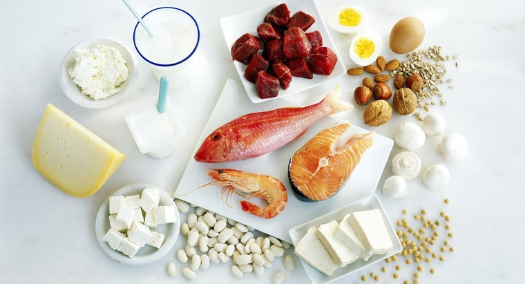 Where Can You Find a List of the Foods With the Highest Protein Content?