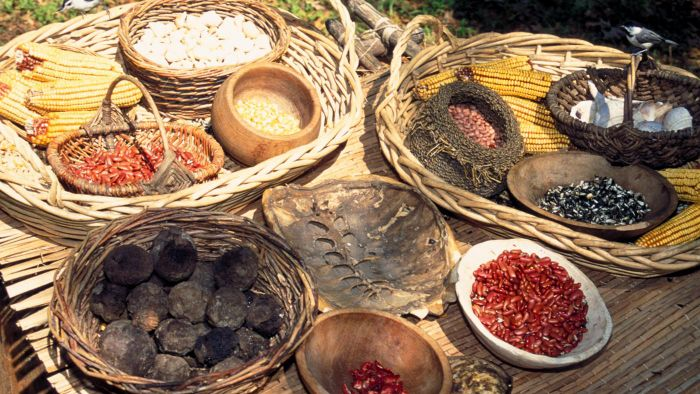What Types of Food Did the Caddo Indians Eat?