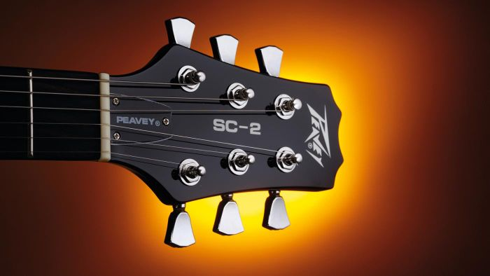 What Are Peavey Guitar Serial Numbers?