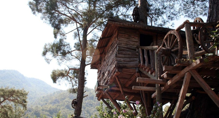 Where Can You Find Treehouse Plans?