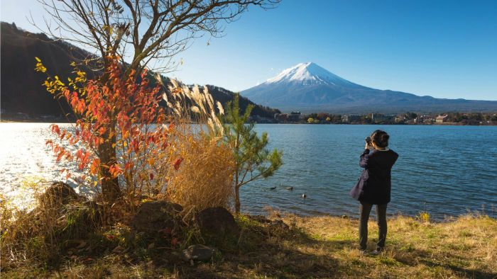 What Are Some Good Japan Tour Packages?