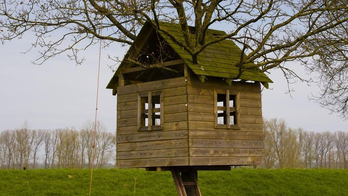 How Do You Build a Treehouse for Kids?