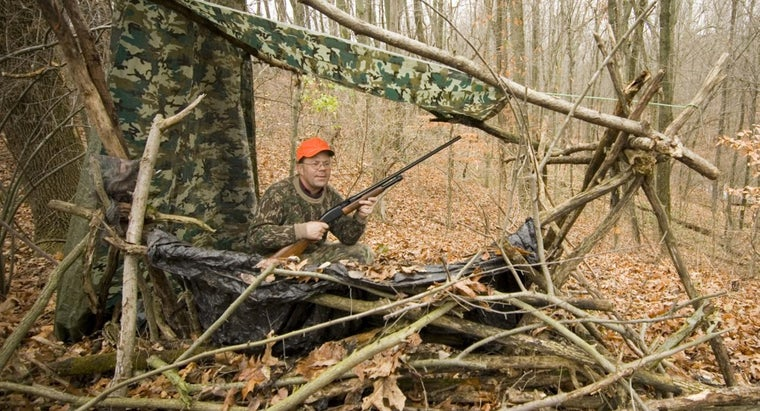 When Are the Hunting Seasons According to Iowa's Department of Natural Resources?