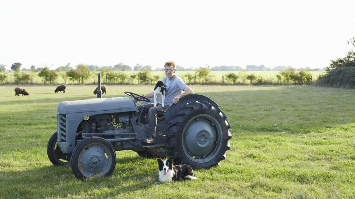 How Can You Make Sure Used Farm Tractors Sold on EBay Are Good Buys?